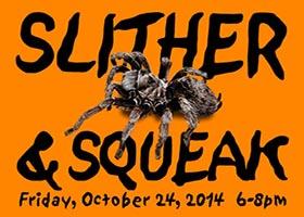Slither & Squeak
