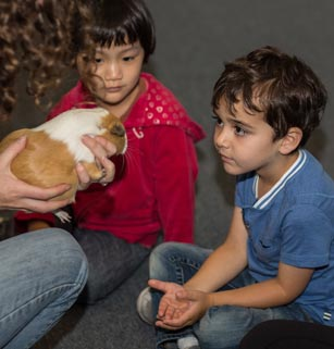 Two children observe woman handling guinea pig