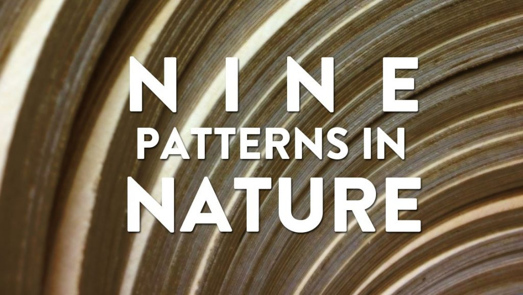 Nine Patterns in Nature