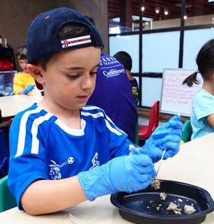 Boy dissects owl pellet