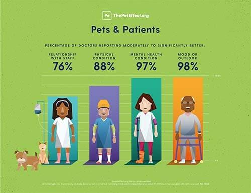 NIH_Habri_Pet_Effect