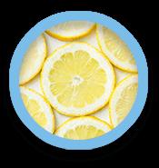 Lemon slice circles