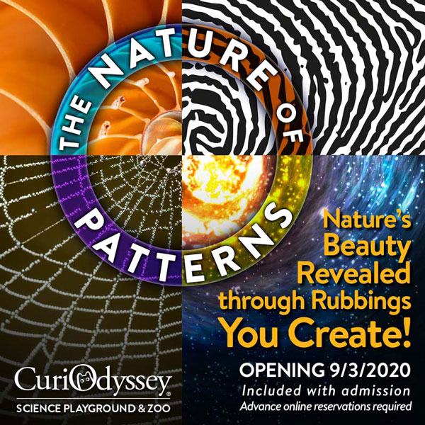 The Nature of Patterns outdoor exhibit opens September 3.