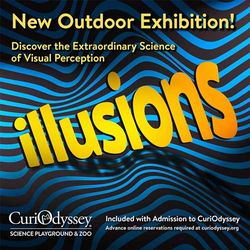 Illusions outdoor exhibition