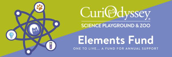 Banner - Elements Campaign