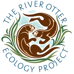 River_Otter_Ecology_Project_logo